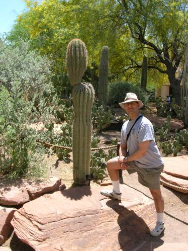 Gene and cacti