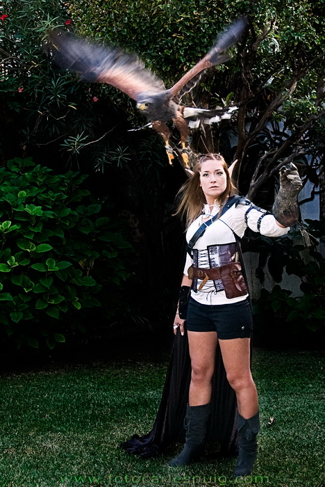Hunter Elf And Falcon - Elven Girls - Magical Pictures